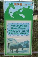 動物園ニュース