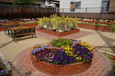 かなり本気な感じの花壇公園。