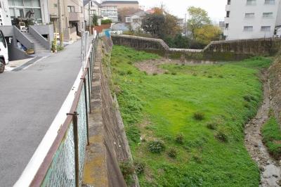 砂防ダムにできた三角緑地。左端に馬がいます。