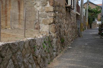 大事な大事な石垣なのです。