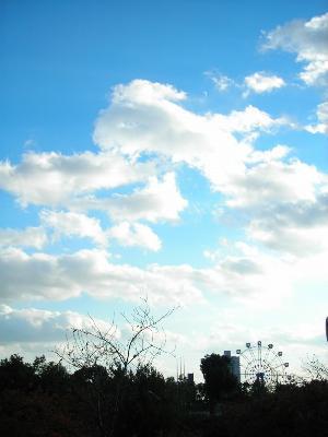 天城通から見た灘の空。