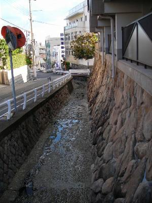 観音寺川。天城通まで下りてくると滝は見あたらないか。。