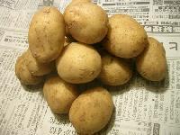 沖永良部島産馬鈴薯