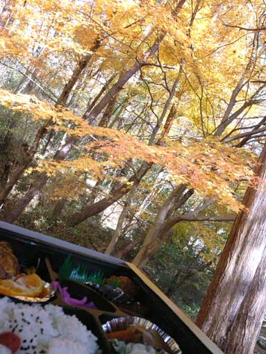 紅葉の庭(摩耶山)