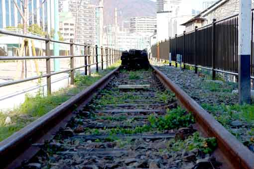 残された臨港線の線路