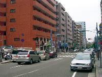 マルヤマ百貨店付近(H17)